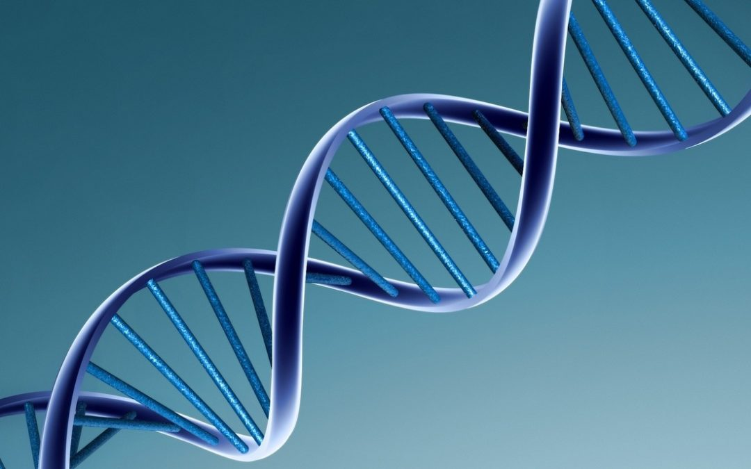 Are Genes Really Our Destiny?
