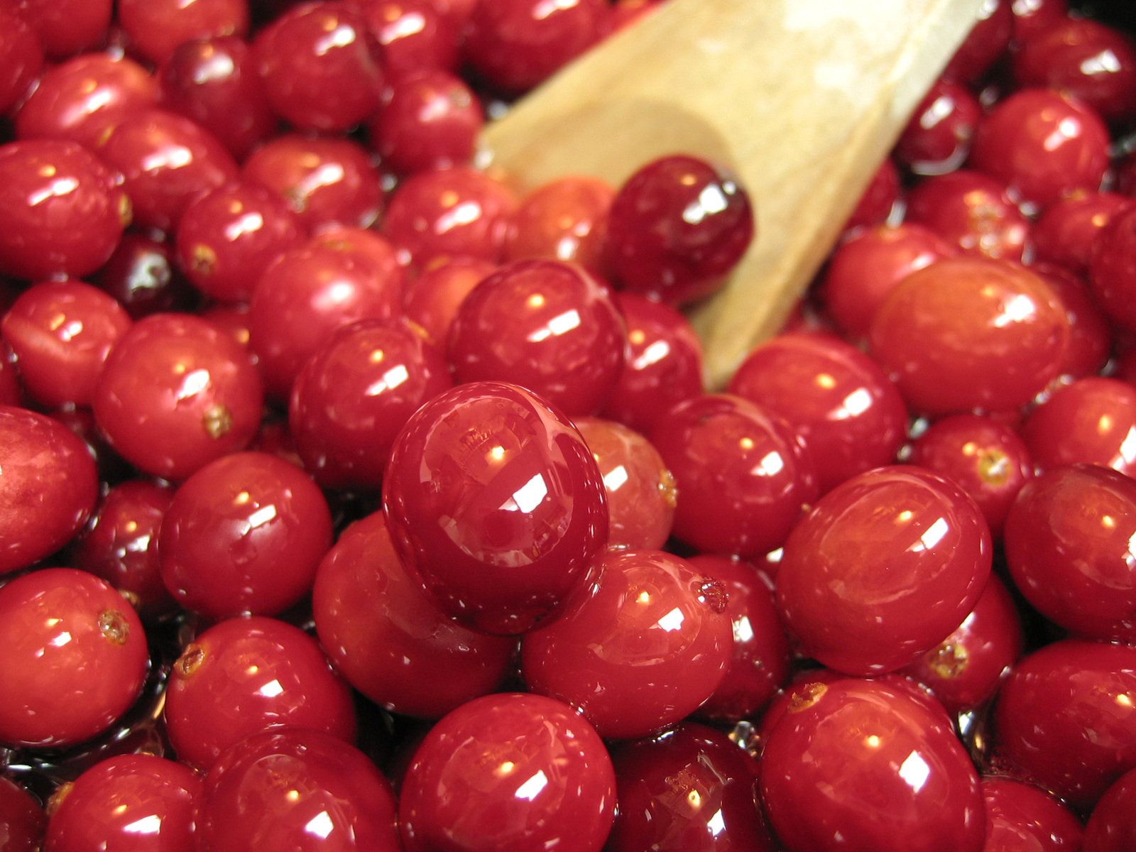 Cranberries, Consciousness, and the Cook